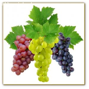 Масло виноградной косточки,  1л